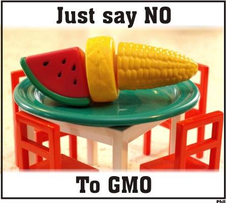 چند درصد ایرانیان به محصولات GMO نه می گویند؟