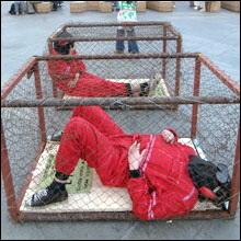 Guantanamo, Irak, Afghanistan... démocrature occidentale Guantanamo_action